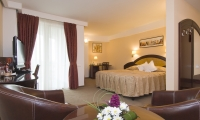cazare Hotel Ambient poza